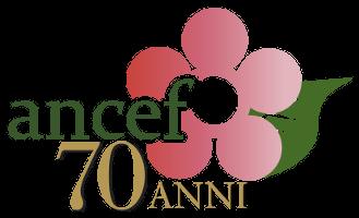 Ancef Logo